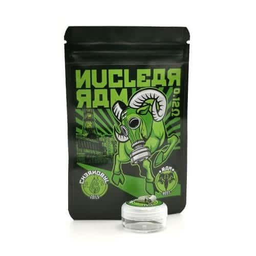 chernobyl-coils-nuclear-ram